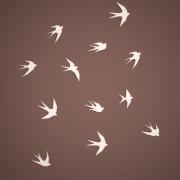 swallows-a-imagem-1_pp